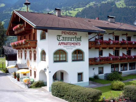 pension tannerhof zell am ziller (2)
