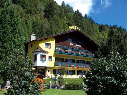 hotel sportalm bad kleinkirchheim (8)