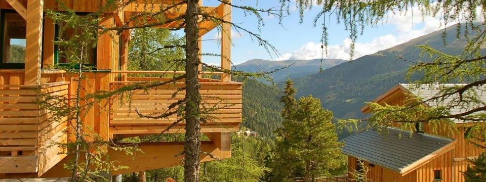 chalets alpenpark turrach (155)