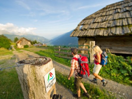 alpe adria trail aernten werbung by frans gerdl