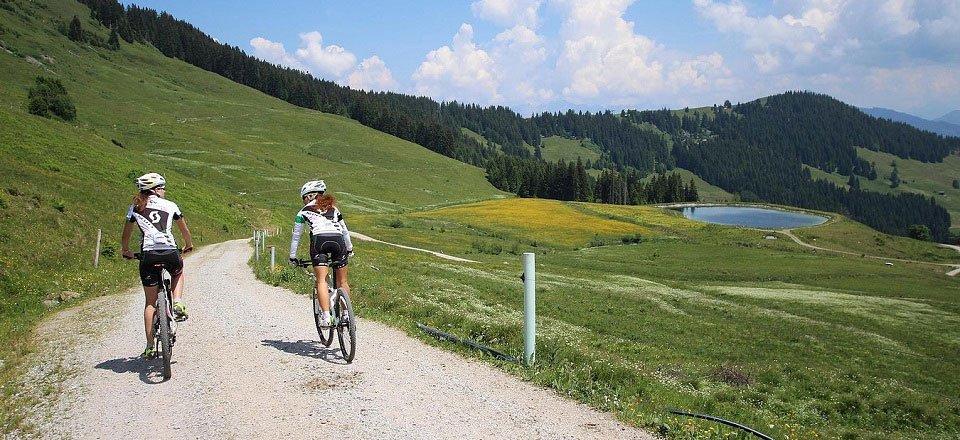 mountainbiken niederau wildschonau tourismus