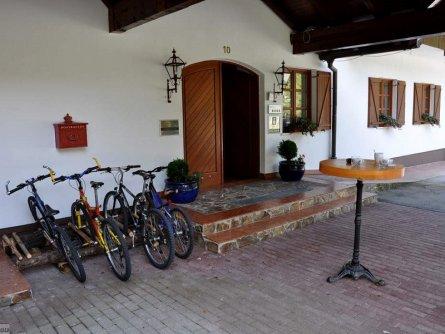 hotel plesnik villa palenk logarska dolina (25)