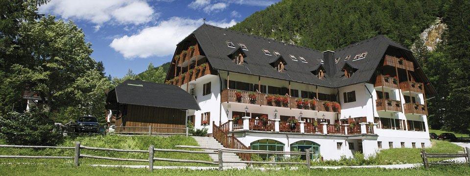 hotel plesnik villa palenk logarska dolina (101)