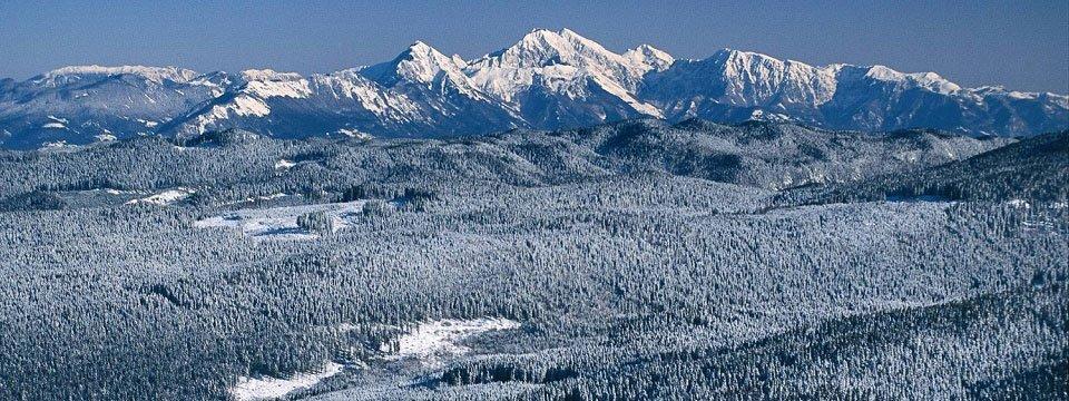 langlaufen crosscountry skitour pokljuka plateau slovenie