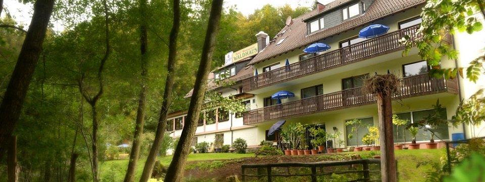 hotel waldhaus mespelbrunn (104)