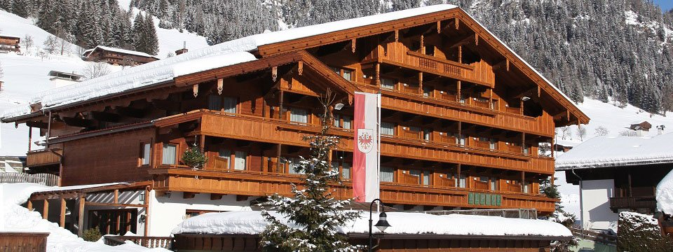 hotel alphof alpbach (103)