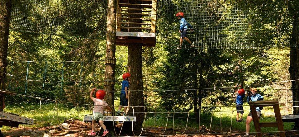 forest park molveno trentino italië