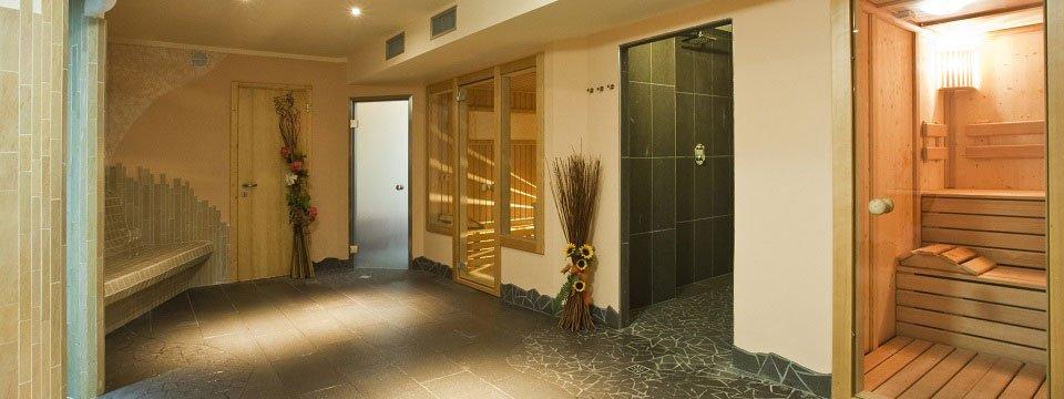 gaia wellness residence hotel mezzana val di sole (105)