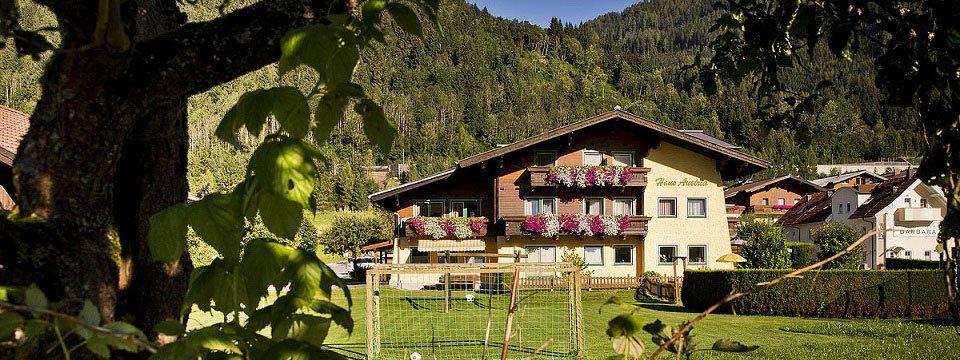appartementen haus austria flachau (103)
