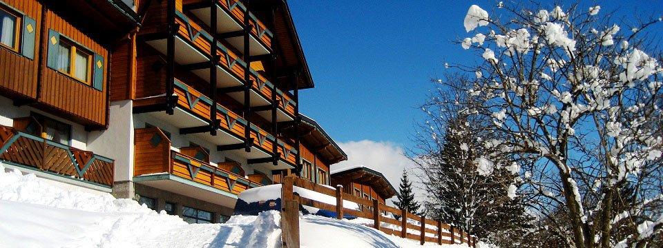 hotel ferienalm schladming (102)