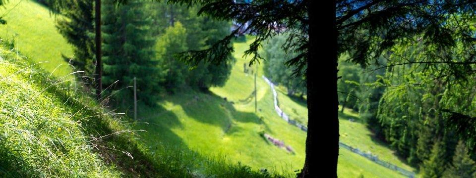 hohe tauern trail alpe adria trail vakantie oostenrijk oostenrijkse alpen (11)