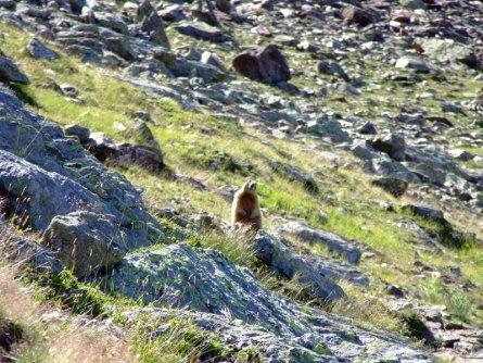 huttentocht stelvio nationaalpark dolomieten vakantie italiaanse alpen italie wandelen (9)