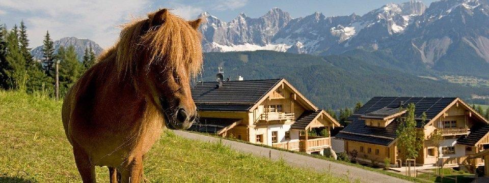 almdorf reiteralm almhotel edelweiss schladming steiermark vakantie oostenrijk oostenrijkse alpen (3)