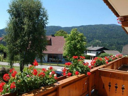 hotel gfrerer lipp feldkirchen im kaernten karinthie vakantie oostenrijk oostenrijkse alpen (8)