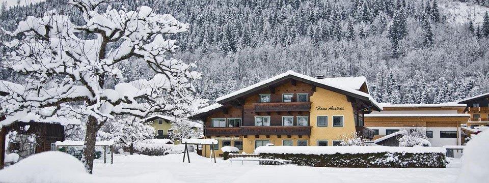 haus austria flachau salzburgerland (1)