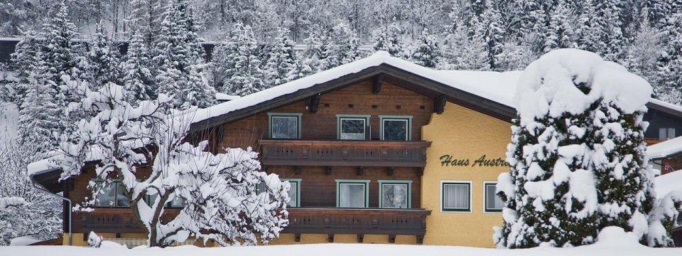 haus austria flachau salzburgerland (4)