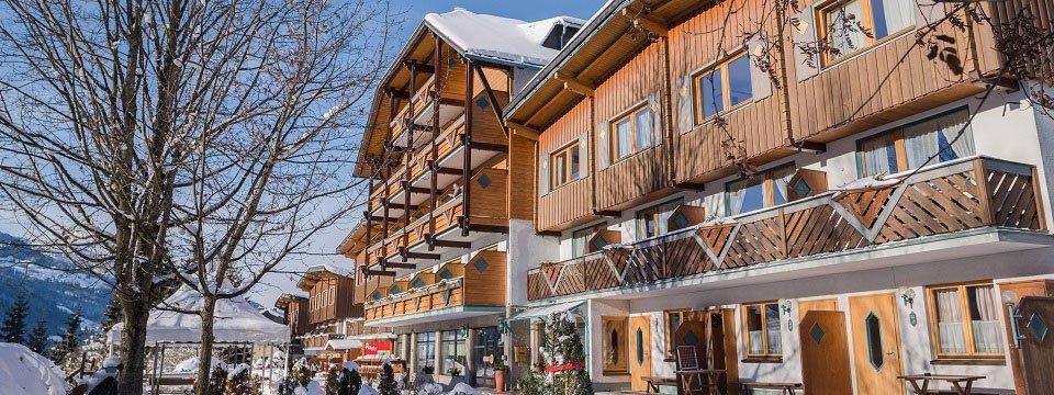 hotel ferien alm schladming steiermark (2)