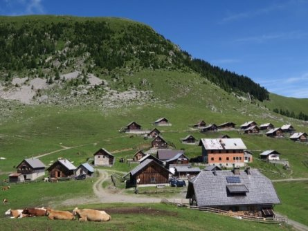 3 landen mini trail alpe adria trail r03 (3)