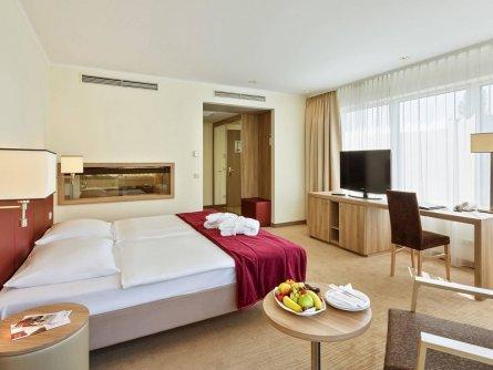 hotel schillerpark linz oberösterreich (21)