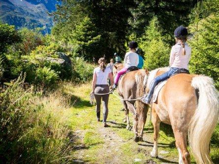 paardrijdvakantie tirol paardrijden pension apartpension almhof reithof pitztal sankt stefan im pitztal vakantie oostenrijk oostenrijkse alpen (17)