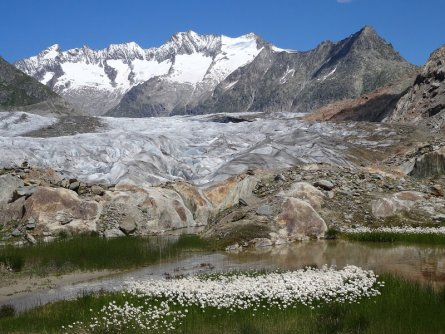 actieve vakantie gletsjertrekkings aletsch gletsjer trekking vakantie zwitserland (21)