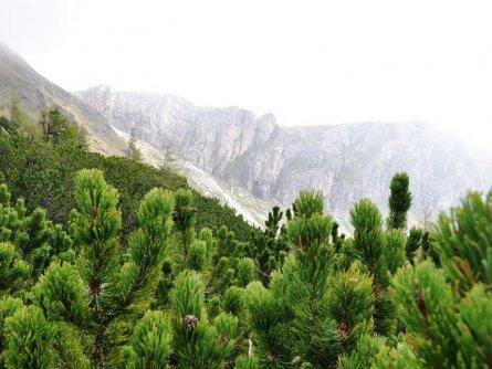 alpe adria trail huttentocht etappe 15 (1) blick vom nassbodensee zur zunderwand