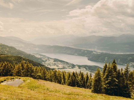 alpe adria trail huttentocht etappe 13 (7) alexander hütte 3