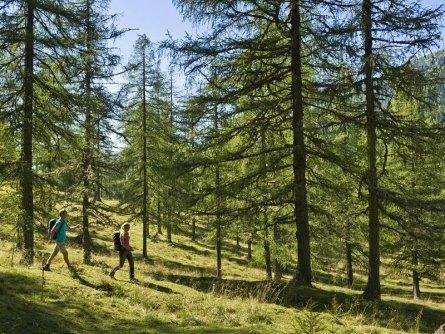 alpe adria trail huttentocht etappe 14 (2)