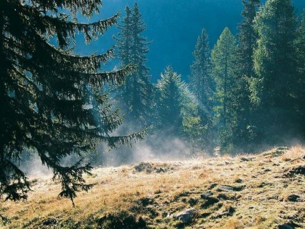 alpe adria trail huttentocht etappe 16 (3) biosphärenpark nockberge
