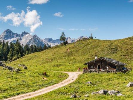 avontuurlijke familievakantie family active lofer pinzgau oostenrijk begeleide wandeling naar almhut kallbrunnalm (7)
