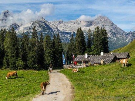 avontuurlijke familievakantie family active lofer pinzgau oostenrijk begeleide wandeling naar almhut kallbrunnalm (6)