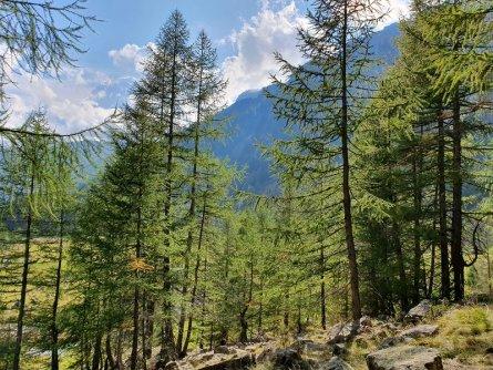 stelvio national park glacier trail actieve vakantie outdoor active val di sole avontuurlijke familievakantie italiaanse alpen italie val di sole huttentocht (1)
