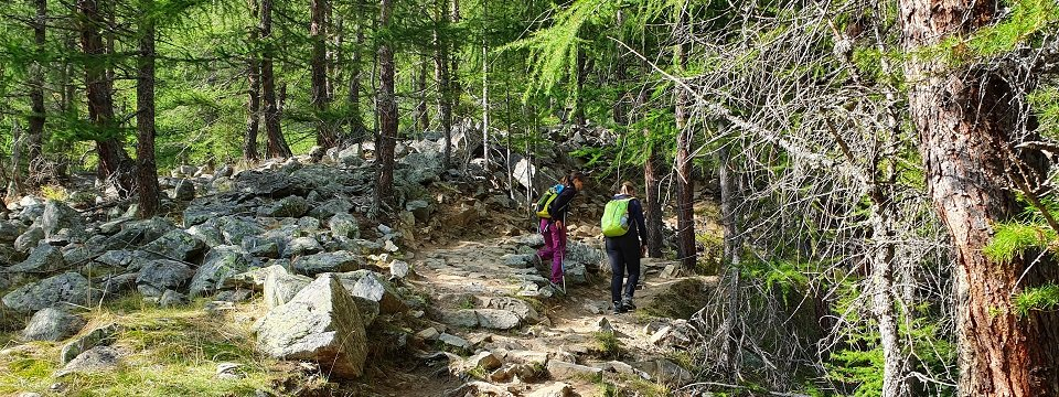 stelvio national park glacier trail huttentocht wandelen wandelvakantie actieve vakantie val di sole trentino italiaanse alpen (1)