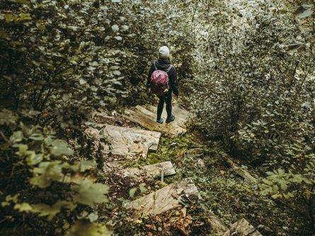 lynx trail meerdaagse wandeltocht oostenrijk oostenrijkse alpen etappe 5 durch den sebringgraben