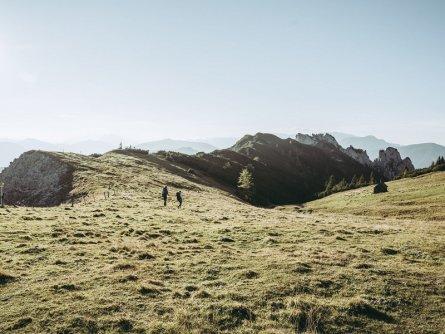 lynx trail meerdaagse wandeltocht oostenrijk oostenrijkse alpen etappe 4 am plateau der scheiblegger hochalm