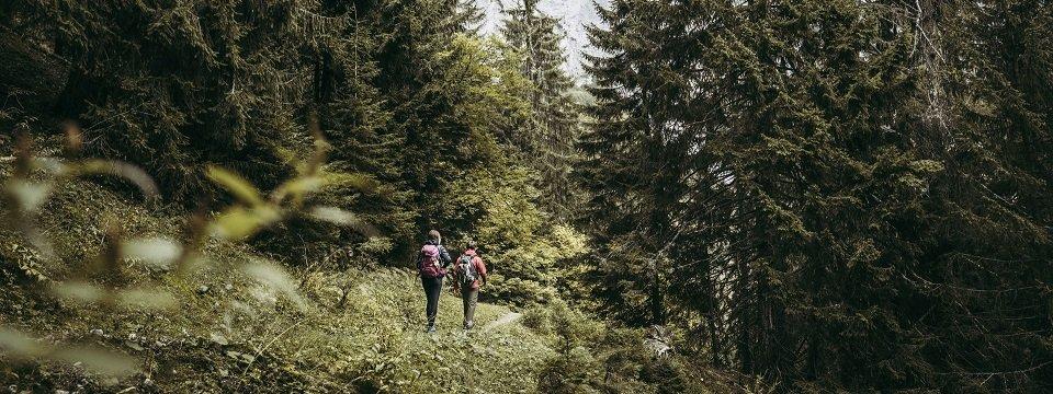 lynx trail meerdaagse wandeltocht oostenrijk oostenrijkse alpen etappe 5 in den gesaeusewaeldern (2)