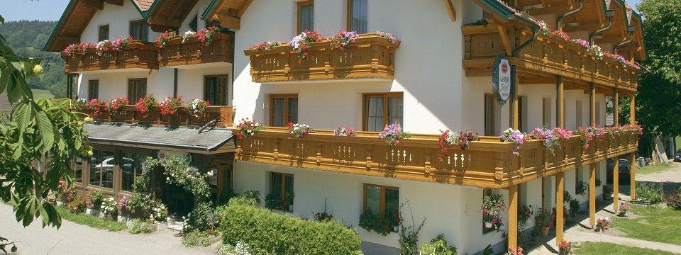 hotel gfrerer lipp feldkirchen in karnten (102)