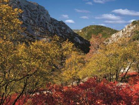 prosecco trail alpe adria trail meerdaagse wandeltocht val rosandra (4)