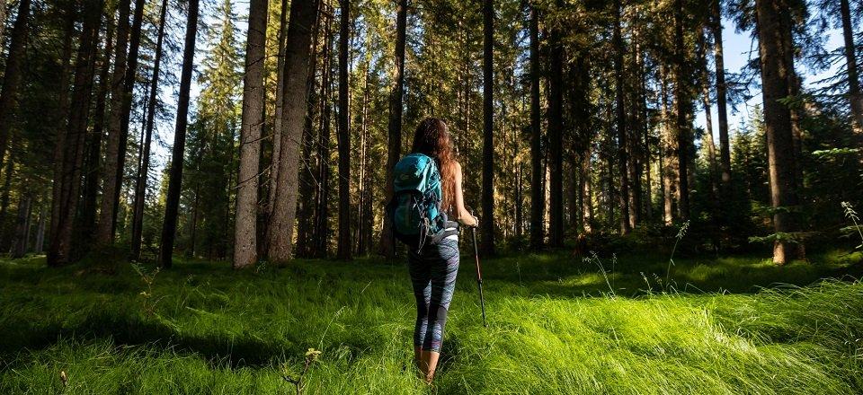 gehele juliana trail actieve vakantie meerdaagse wandeltocht julische alpen slovenië pokljuka (1)