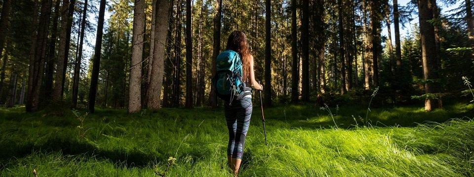 gehele juliana trail actieve vakantie meerdaagse wandeltocht julische alpen slovenië pokljuka (2)