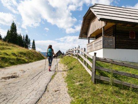 juliana trail etapa5 bled goreljek 01 (mitja sodja)