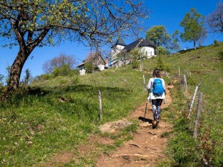 juliana trail etapa3 jesenice begunje 02 (mitja sodja)