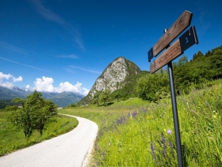 juliana trail etapa6 goreljek pokljuka stara fuzina 15 (mitja sodja) (1)
