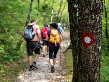juliana trail etapa15 log pod mangartom cave del predil 18 (mitja sodja)