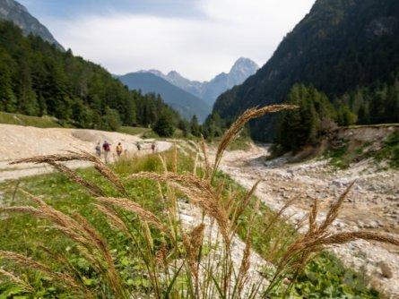 juliana trail etapa15 log pod mangartom cave del predil 38 (mitja sodja) (1)