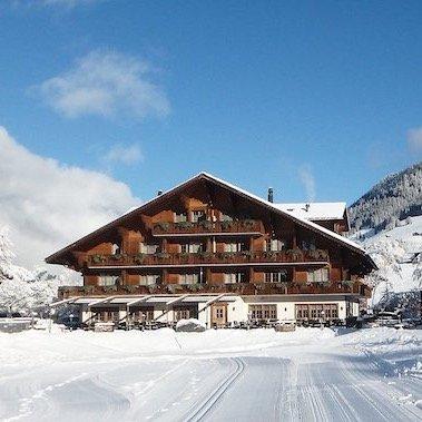hotel alpenland lauenen bei gstaad bern (50)