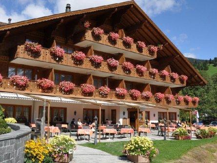hotel alpenland lauenen bei gstaad bern (21)