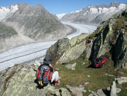 aletschgletscher fiesch wallis zwitserland adobestock