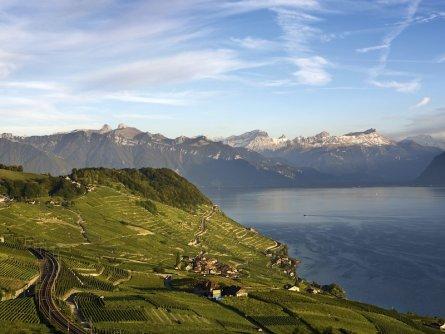 lavaux wijnbergterrassen meer van geneve waadt zwitserland my switzerland (1)