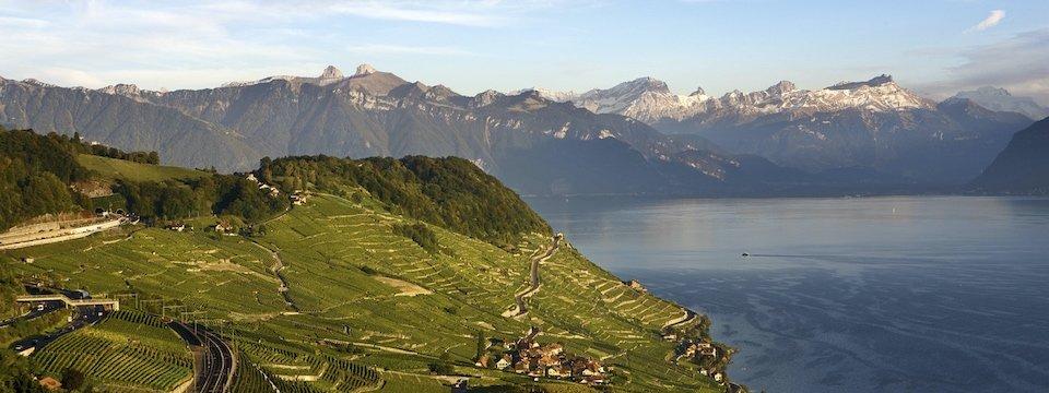 lavaux wijnbergterrassen meer van geneve waadt zwitserland my switzerland (2)